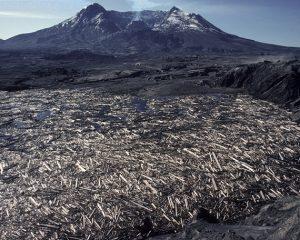der ausgebrochene Mount St. Helens ohne Spitze und der davor liegende Spirit Lake voller Baumstämme