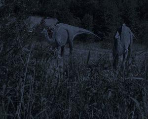 zwei zweibeinige Dinosaurier in der Nacht