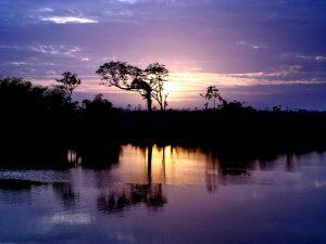 Abendstimmung in Guyana
