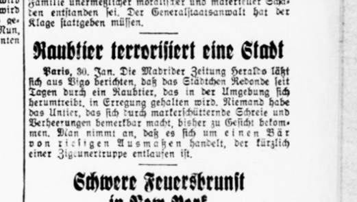 Deutsche Reichs-Zeitung am 31. Januar 1934
