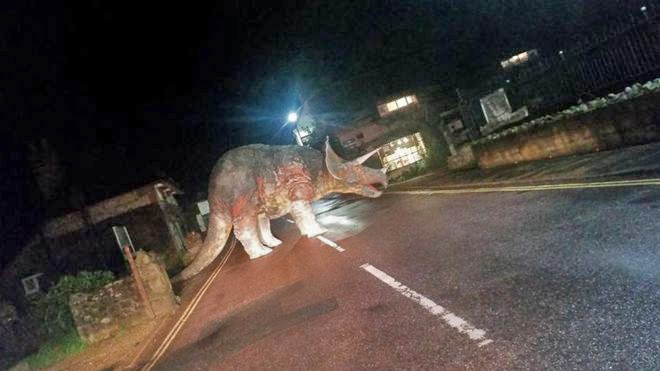 Triceratops Isle of Wight