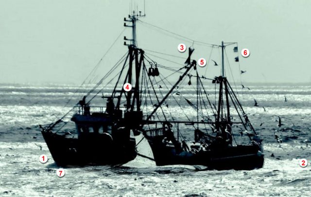 Boot mit angeblichem Megalodon