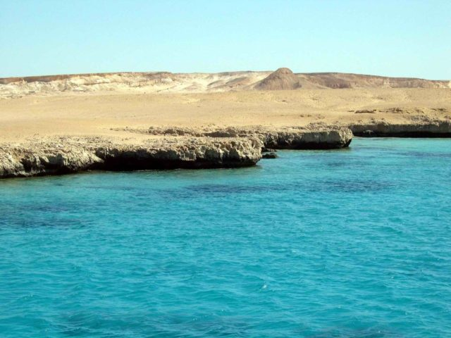 Küste des Roten Meeres, Geburtsort der Wasseraffen?