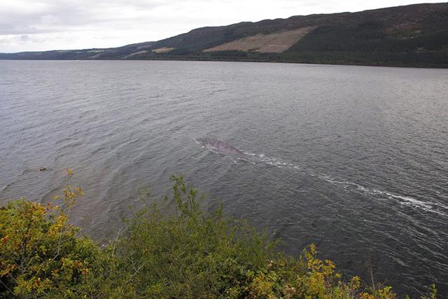 Loch Ness Fake