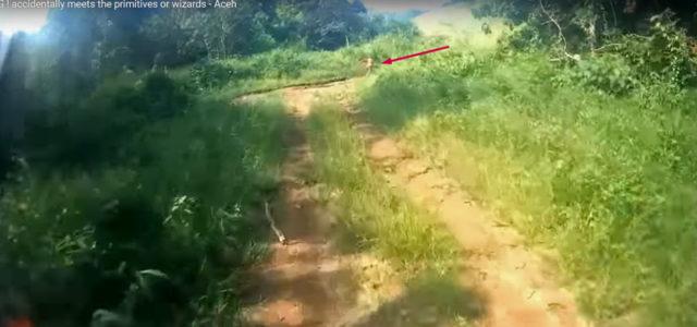 Screenshot aus dem Motorad-Video