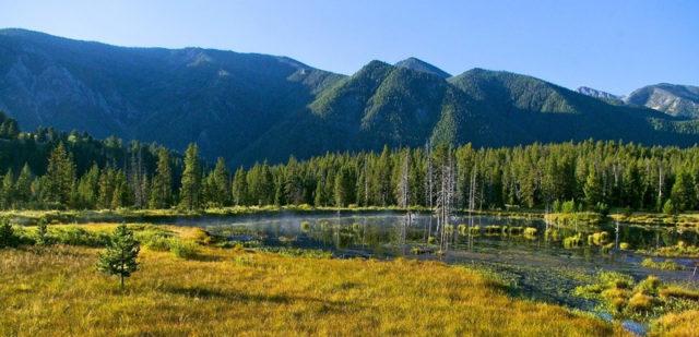 Madison River Valley, Heimat des Ringdocus