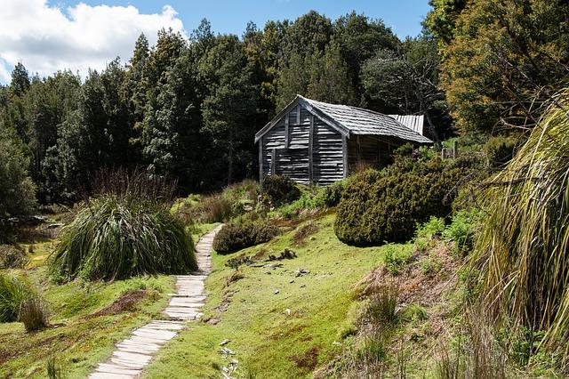 Landschaft Tasmaniens, Füchse hätten hier verheerende Wirkung