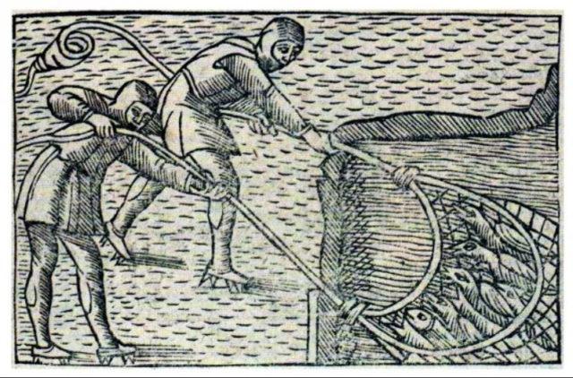 Olaus Magnus Darstellung der Fanges von überwinternden Schwalben mit Netzen