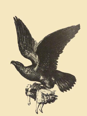 Königsadler entführt Marie Delex