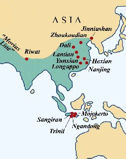 Verbreitung von Homo erectus in Asien