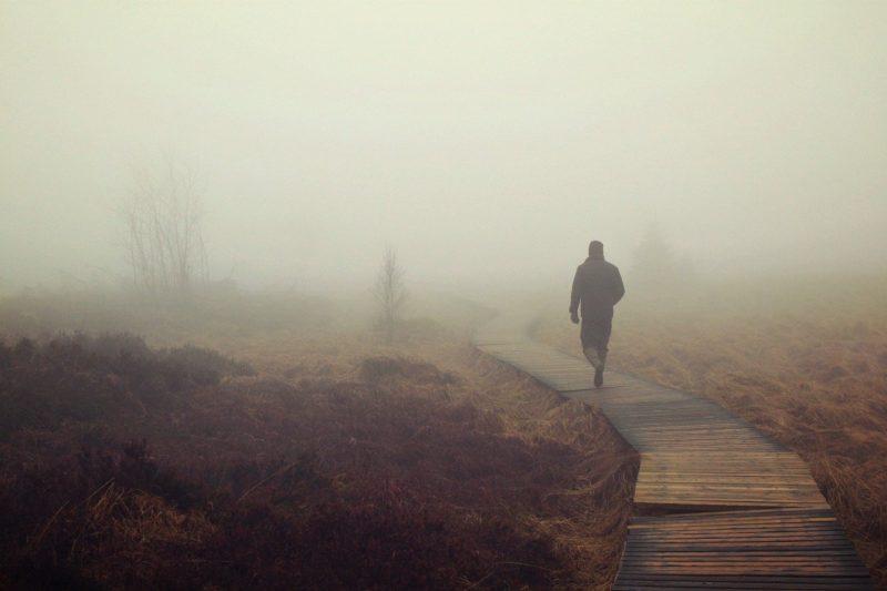 Eifelmoor im Nebel