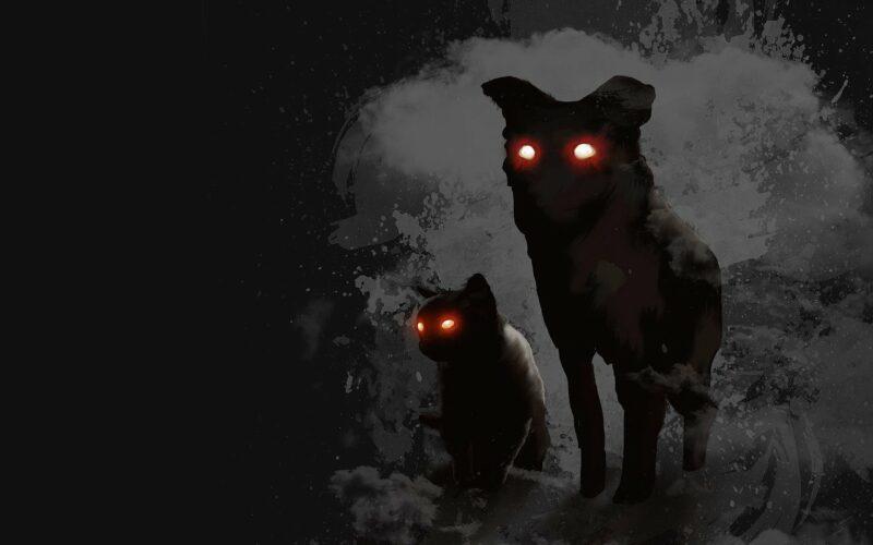 Phantomhund und schwarze Katze mit leuchtenden Augen