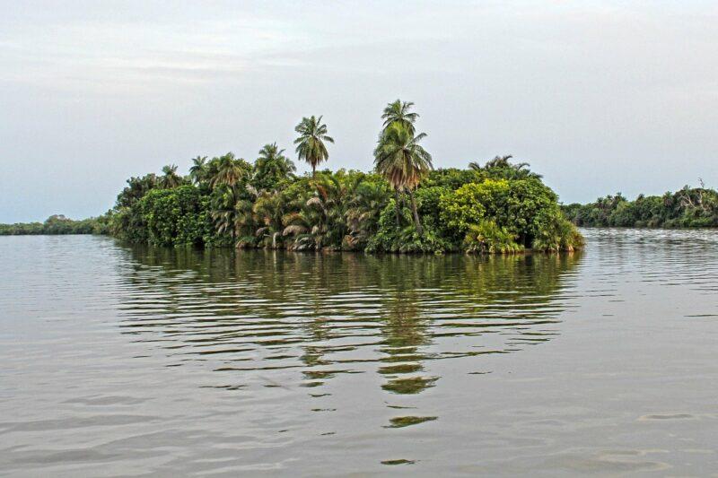 Flussinsel