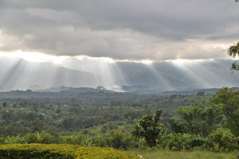Regen über dem Kongo, lebt hier der Kikomba?
